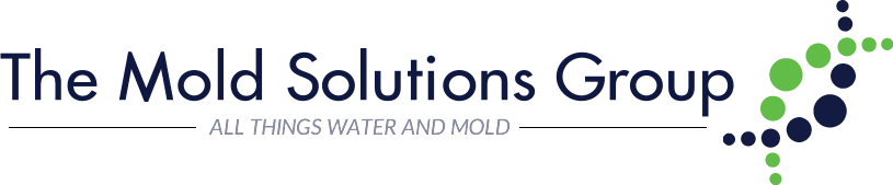 Mold Solutions Group