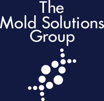 The Mold Solutions Group